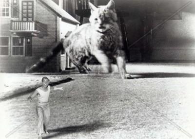 Radiazioni BX distruzione uomo (1955)