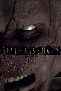 selfassemblyposter