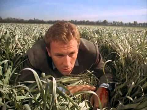 Gli Invasori - Roy Thinnes